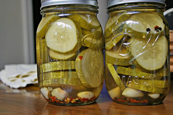 Pickles - Vampire Pickles