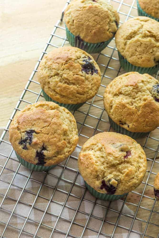 Blueberry Lime Muffins - Make the most out of the summer fruit with these tender blueberry lime muffins.