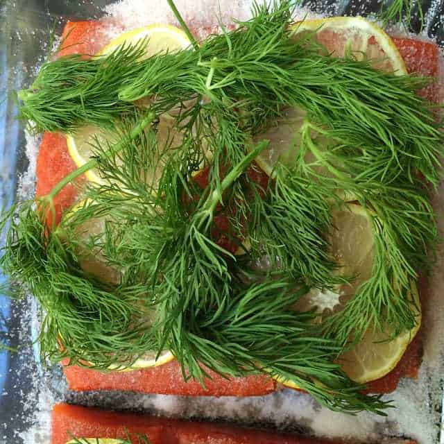 Homemade Gravlax is surprisingly easy to make, and perfect for your morning bagels.