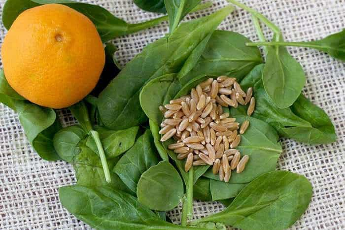Kamut Spinach Salad - Ingredients