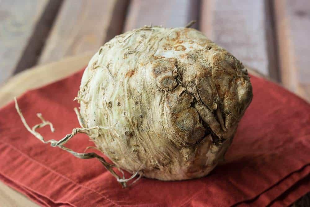 Celery Root Mash - Celery Root