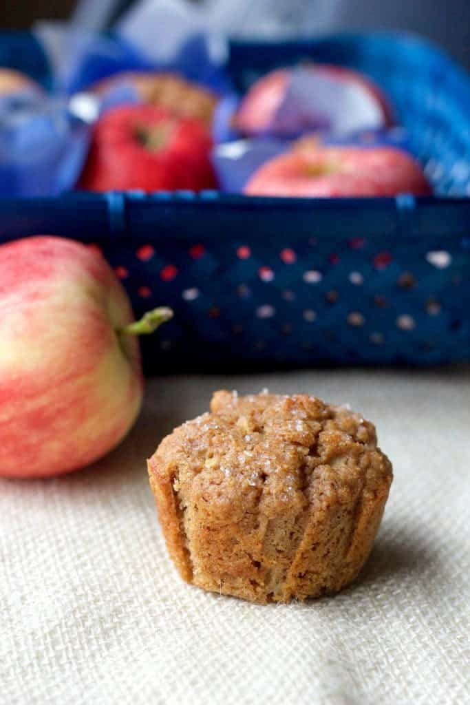Whole wheat apple cinnamon muffins are so perfect for cozy autumn mornings. Pack some for your tailgate!