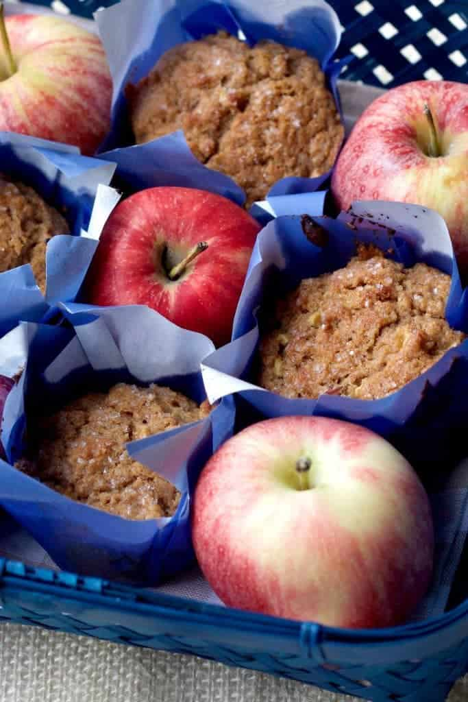 Whole Wheat Apple Cinnamon Muffins are a great fall breakfast. You'll love the flavor!