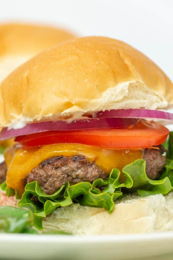 bison burger with lettuce, cheese, tomato, and onion on bun